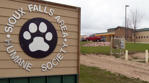 sioux-falls-area-humane-society_174651520621