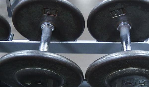 weights_257533530621