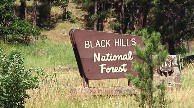 black-hills_443243540621