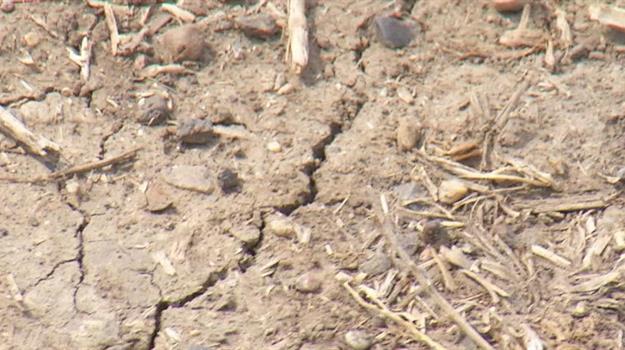 heat-drought-dry-land_623758540621