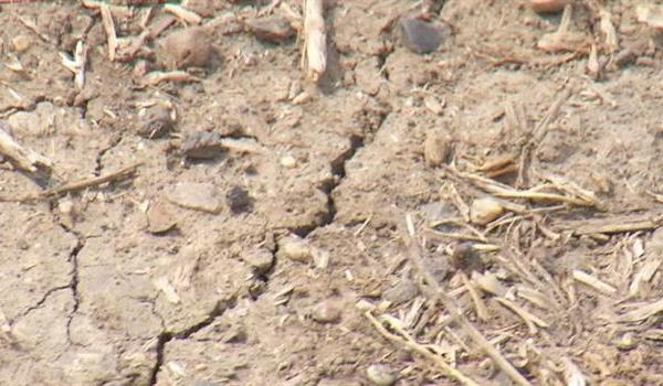 heat-drought-dry-land_623758540621