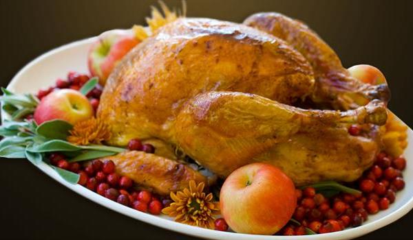 thanksgiving-christmas-turkey-holiday-meal_242374530621