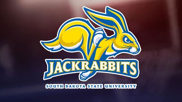 sdsu-south-dakota-state-university-jackrabbits-sdsu-jackrabbits-sdsu-jacks_846256530621