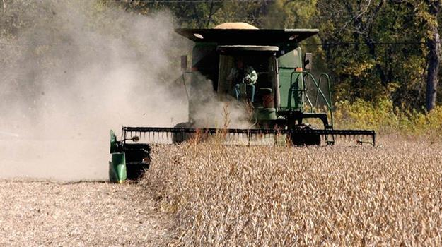 soybean-soybeans-farming-markets-generic-harvest_44129550621