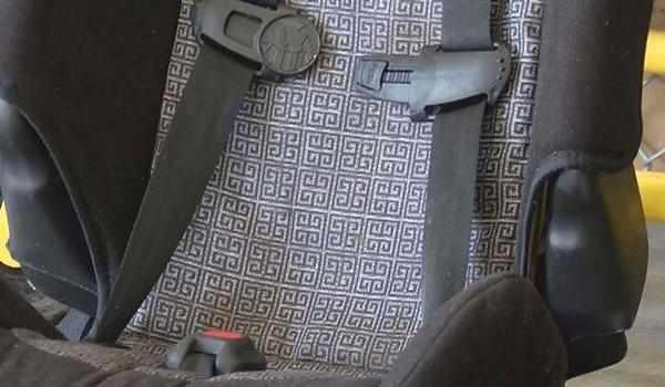 seatbelt_546658550621