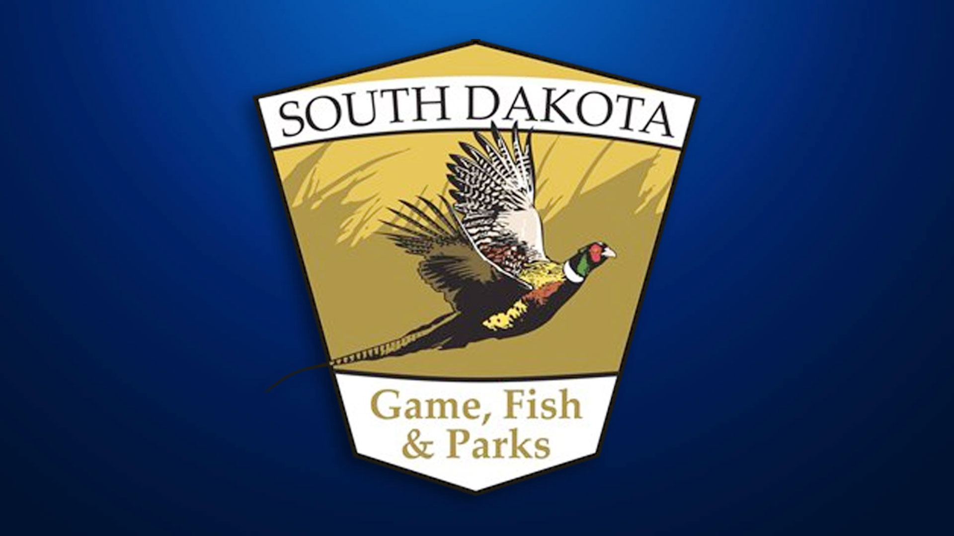 KELO South Dakota Game Fish
