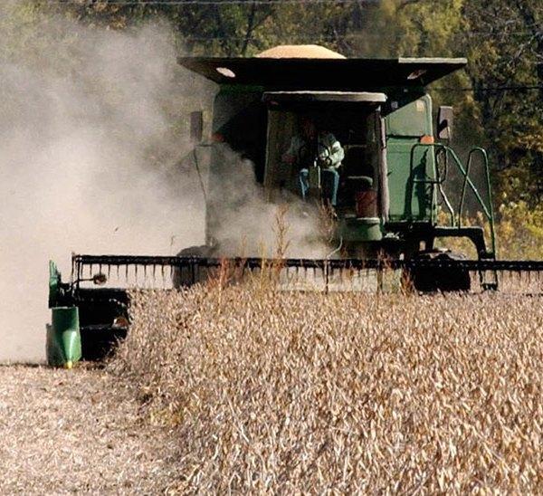 soybean soybeans farming markets generic harvest