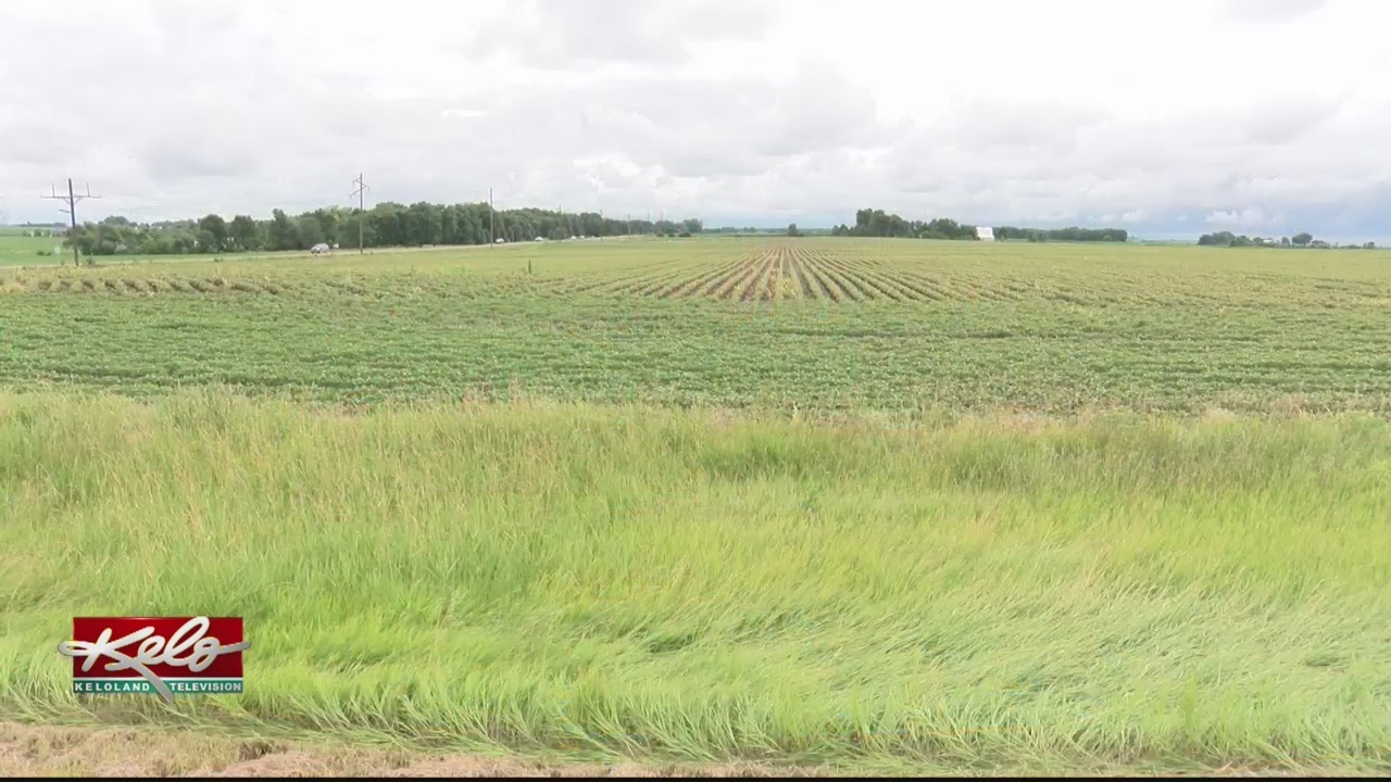 Farmers Push SD Delegation To Take Action