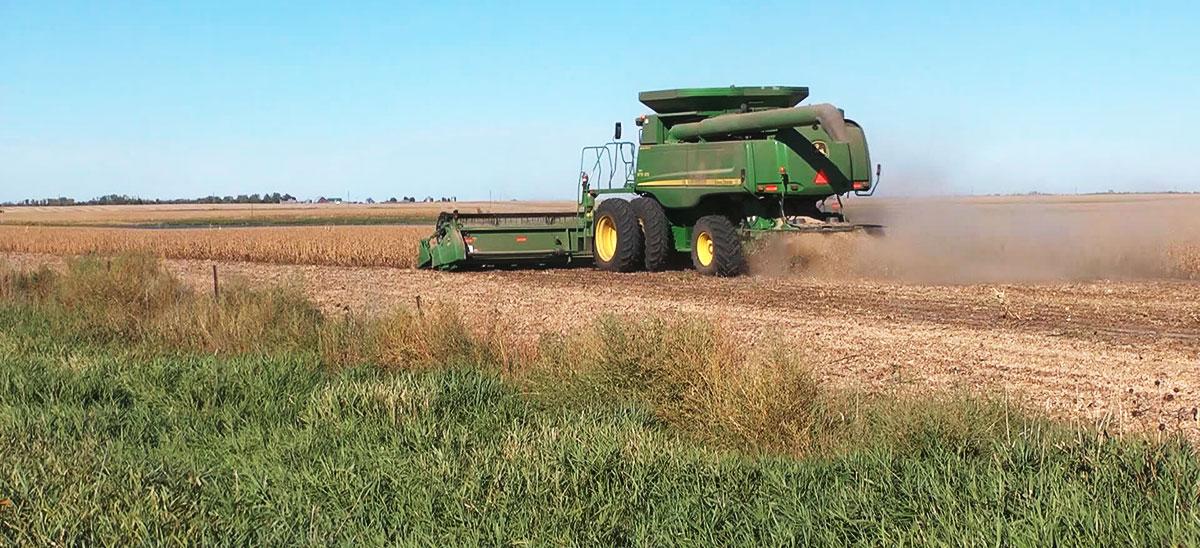 KELO FARMING GENERAL.jpg