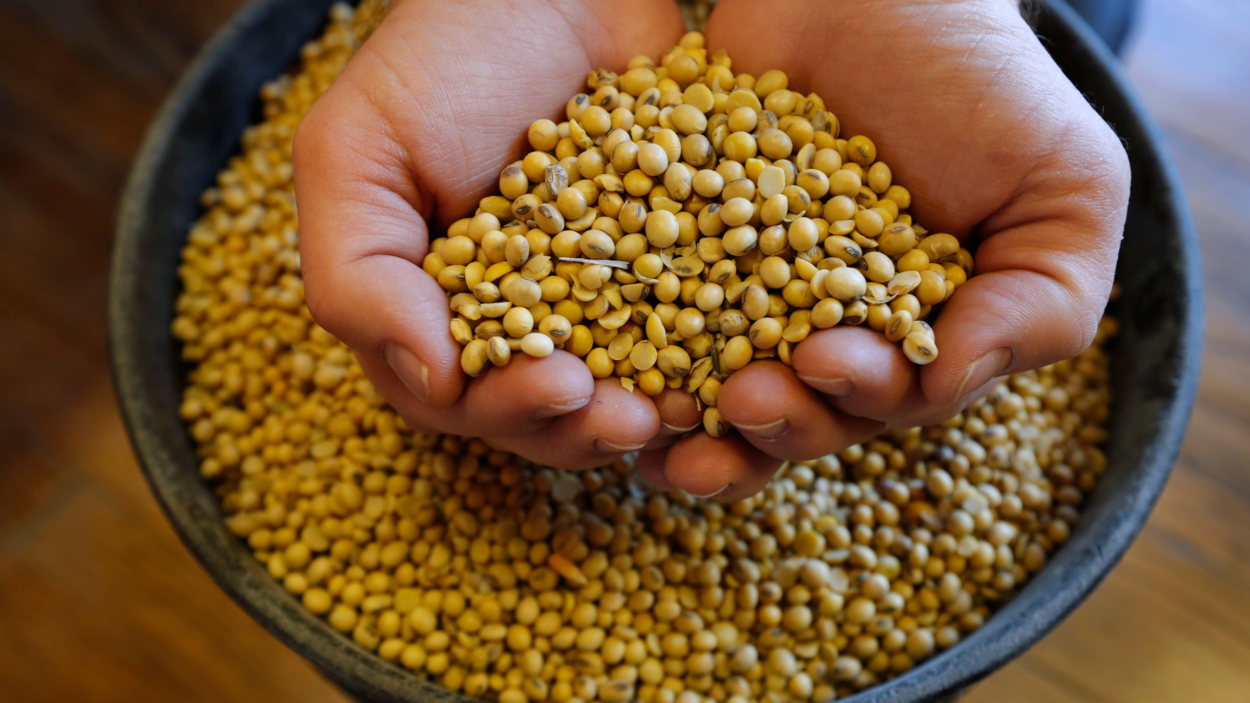 Soybean_Surplus_Tariffs_25780-159532.jpg68835793