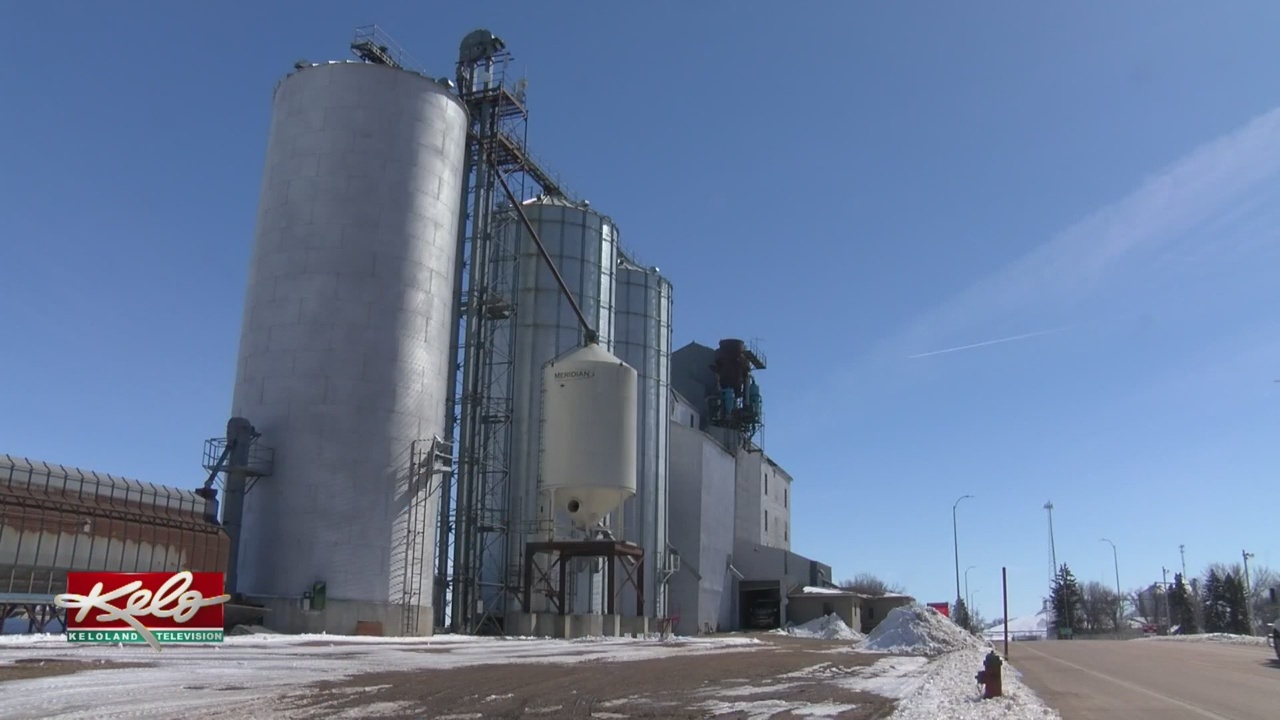 H&I Grain Files For Bankruptcy, Owes More Than $15 Million