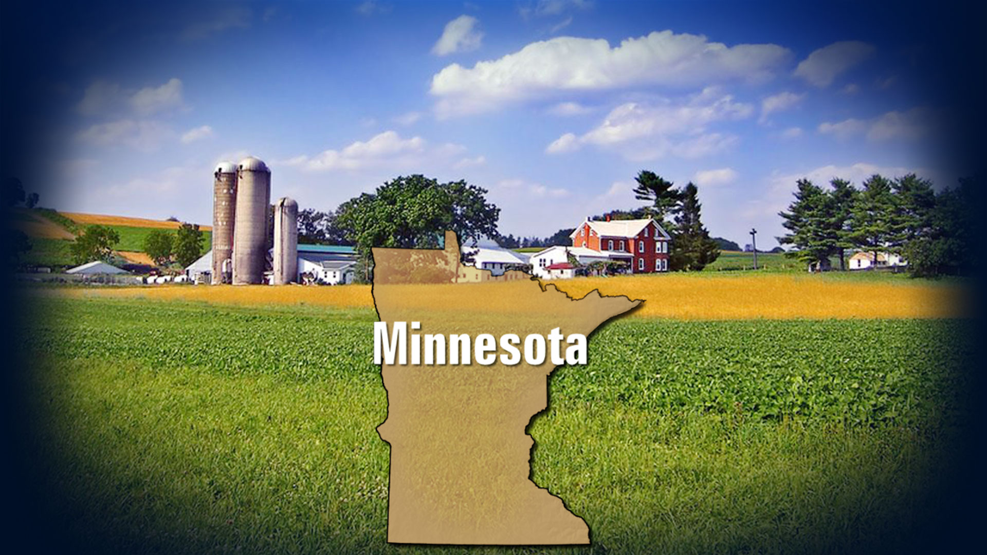 KELO Minnesota Farm