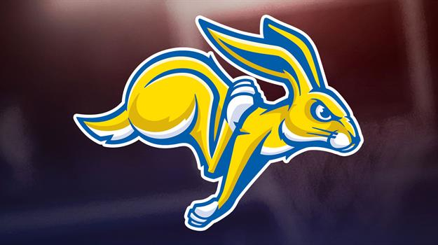 sdsu-south-dakota-state-university-jackrabbits-sdsu-jackrabbits-sdsu-jacks-2_340135540621