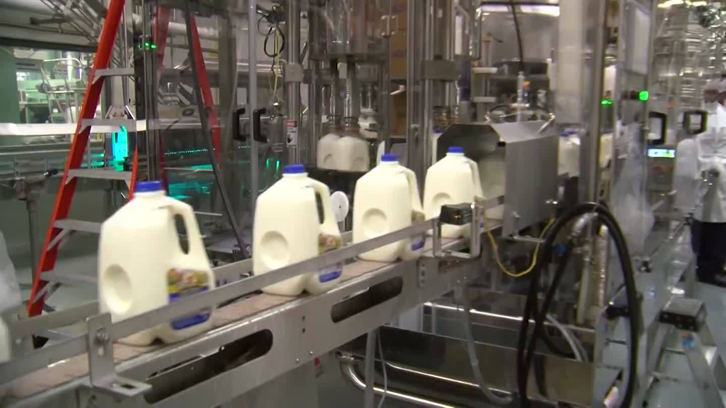Bill aims to make dairy workers eligible for temporary visas