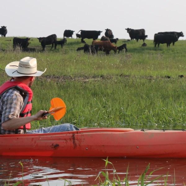 KELO Freeman Kayak Rancher