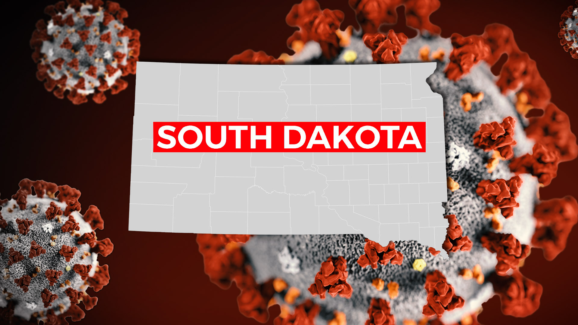 Picture of: How Do South Dakota S Covid 19 Numbers Compare To Other Small States Keloland Com