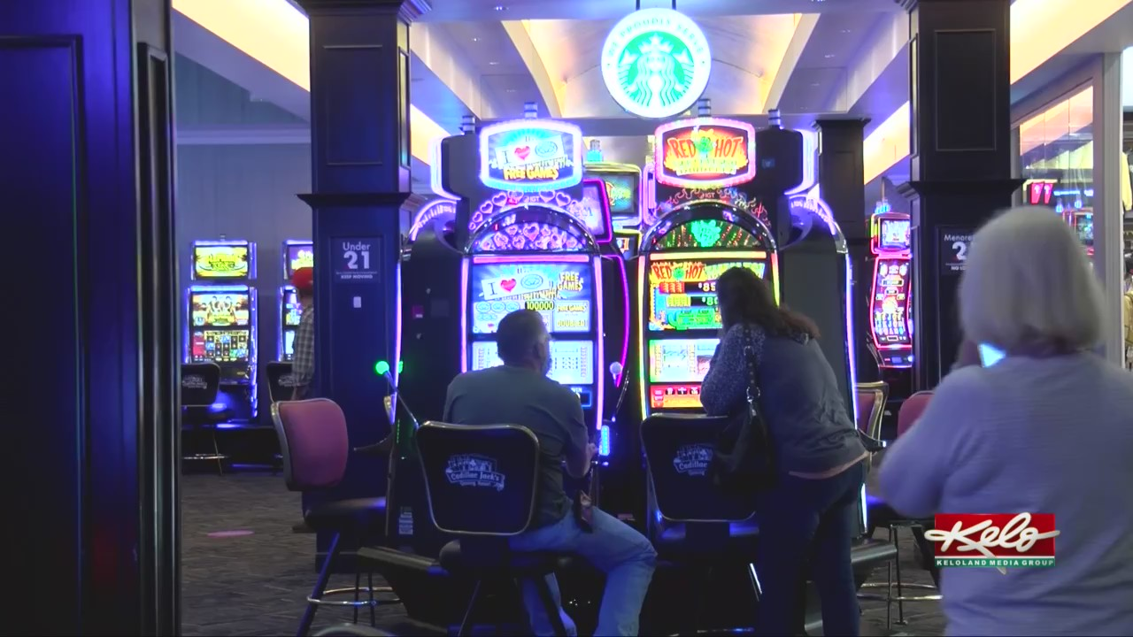 Sports betting south dakota top 1 sports betting