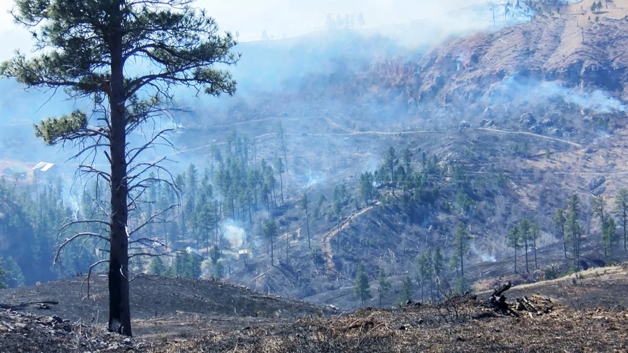 Land burned by Schroeder fire near Rapid City