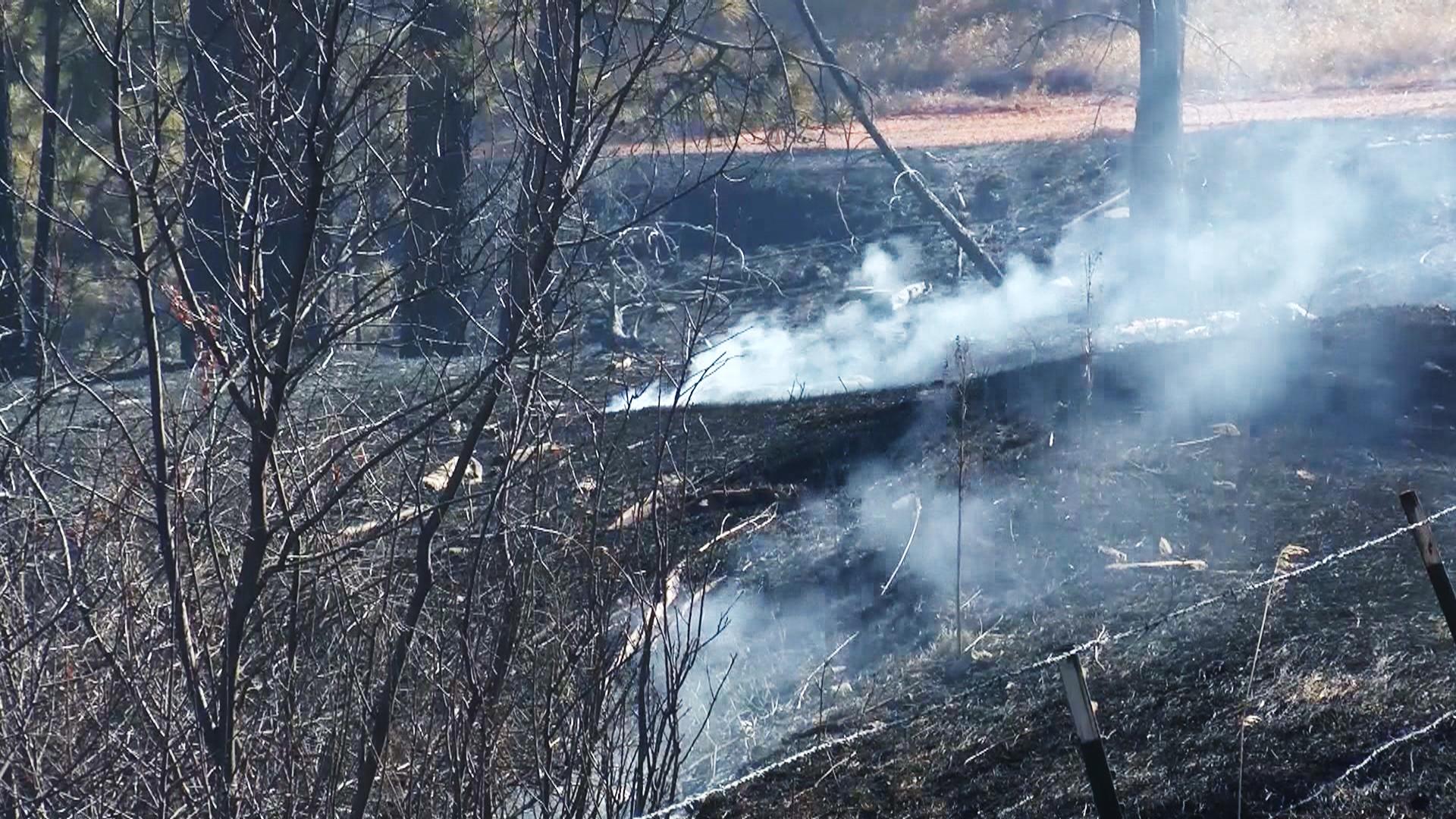 Schroeder fire burn area